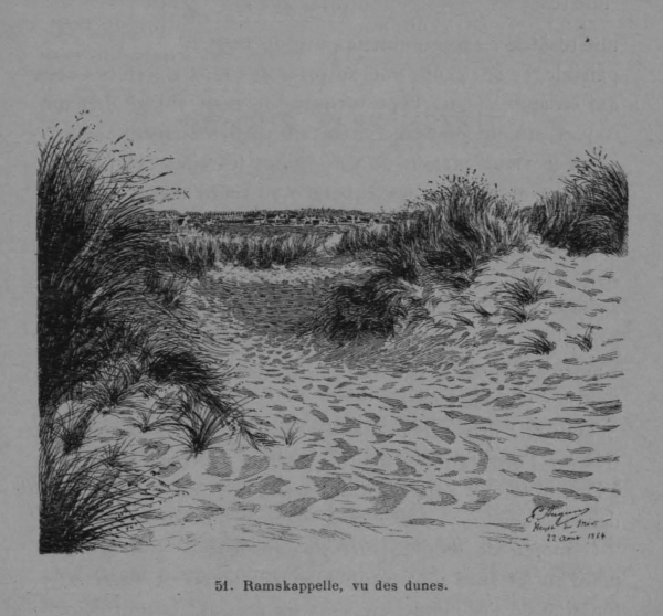 Auguin (1899, fig. 51)