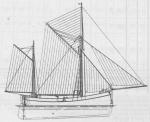 De Zuttere (1909, fig. 17)