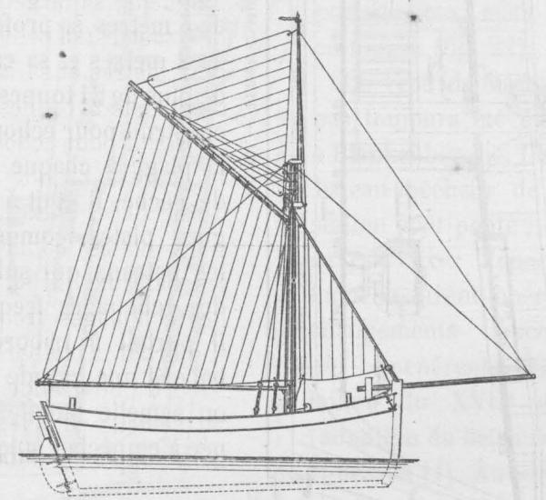 De Zuttere (1909, fig. 19)