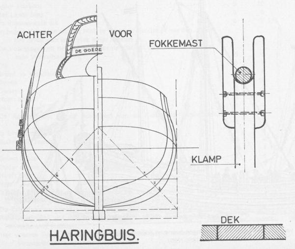 Desnerck (1976, fig. 062)