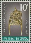 Pterocanium tricolpum