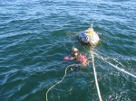 Wave measurements in the Gulf of Gdansk