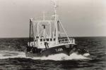 Z.496 Damar (Bouwjaar 1966)