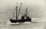 Z.536 Zeevalk (Bouwjaar 1963)