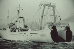 Z.565 Narwal (Bouwjaar 1962)