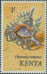 Chicoreus ramosus