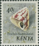 Trochus flammulatus
