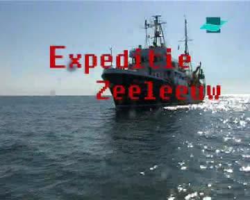 Activiteiten op zee