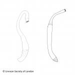 spuitwormen