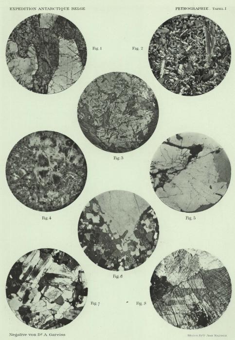 Pelikan (1909, pl. 1)