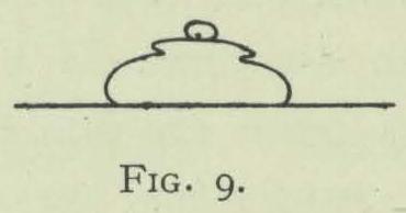 Arctowski (1902, fig. 09)