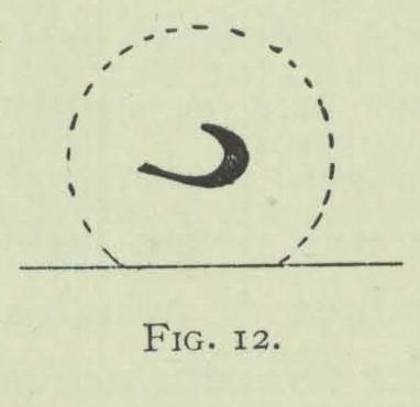 Arctowski (1902, fig. 12)