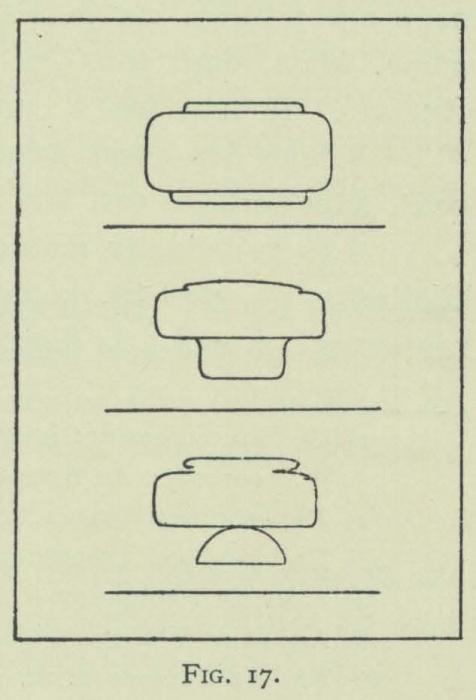 Arctowski (1902, fig. 17)