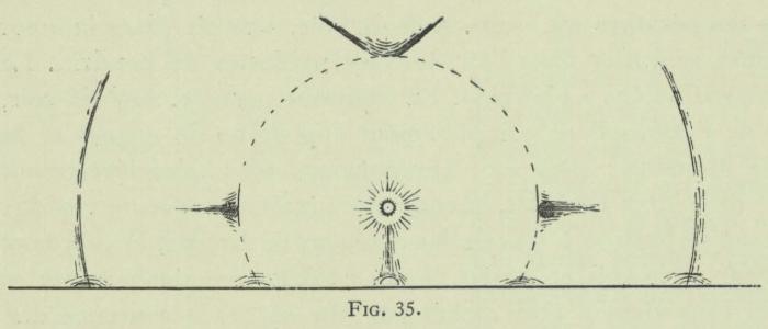 Arctowski (1902, fig. 35)
