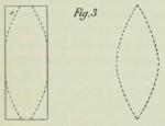 Dobrowolski (1903, fig. 03)