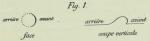 Dobrowolski (1903, appx. fig. 1)