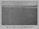 Rahir (1928, fig. 13)