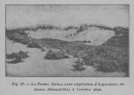 Rahir (1928, fig. 26)