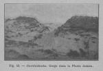 Rahir (1928, fig. 52)