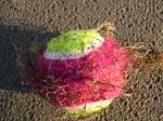 tennisbal + zeedraad, author: Nuyttens, Filip