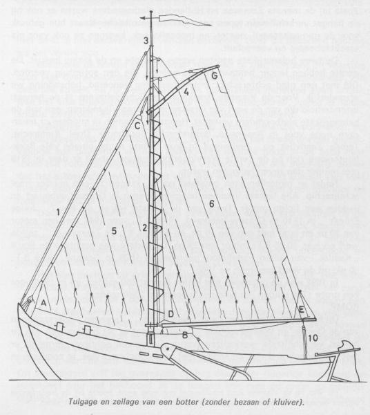 Desnerck (1976, fig. 341)