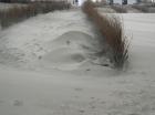 geblazen zandfiguur
