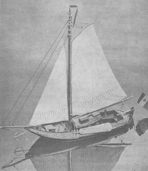 Desnerck (1976, fig. 357)