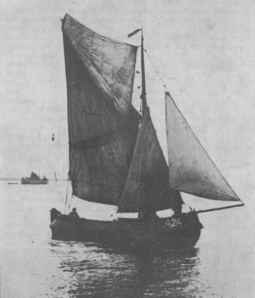 Desnerck (1976, fig. 364)