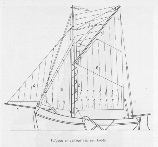 Desnerck (1976, fig. 365)