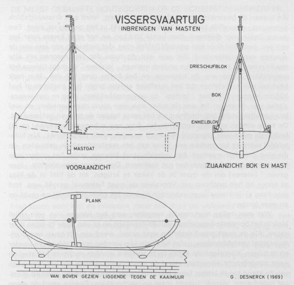 Desnerck (1976, fig. 411)