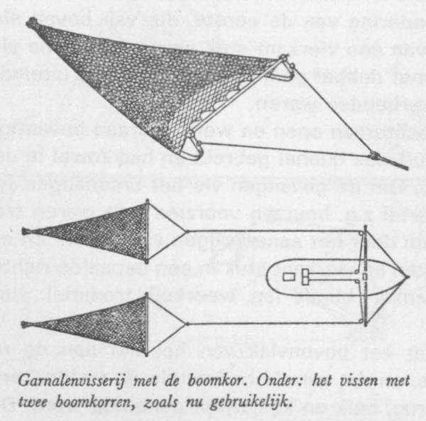 Desnerck (1976, fig. 442)