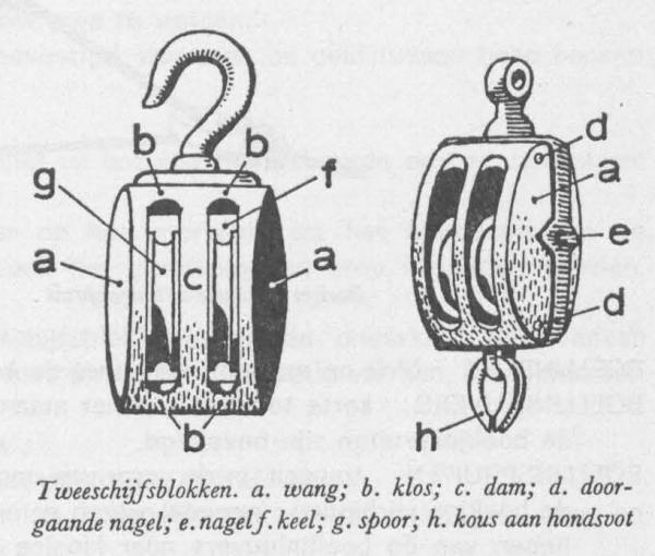 Desnerck (1976, fig. 487)