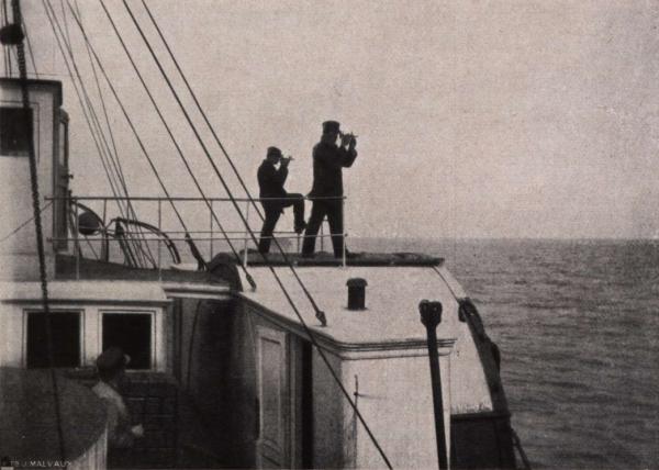 Gilson (1914, fig. 013)