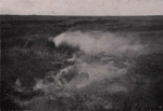 Gilson (1914, fig. 021)