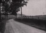Gilson (1914, fig. 023)