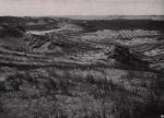 Gilson (1914, fig. 024)