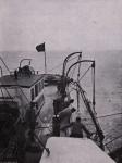 Gilson (1914, fig. 042)