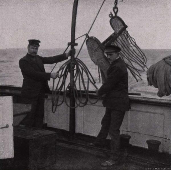 Gilson (1914, fig. 047)