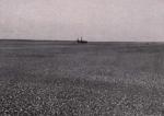 Gilson (1914, fig. 052)