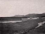 Gilson (1914, fig. 085)
