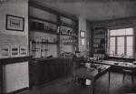 Gilson (1914, fig. 114)