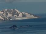 Zheravna Glacier