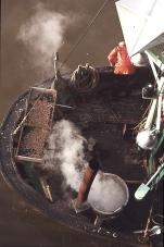Koken van de garnaal - N.106 De Zeemanshoop