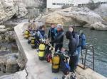 Picture of Porifera training course 9
