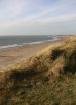 Dune & Beach Domburg