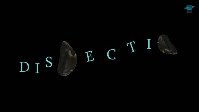 VIDEO: Dissectie mossel