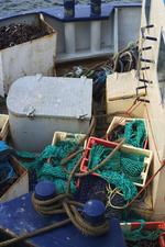 Professionele visserij (traditioneel)