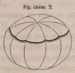 Van Beneden & Bessels (1868, fig. chém. 2)