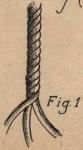 De Jonghe (1912, fig. 01)