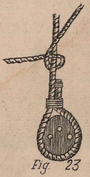 De Jonghe (1912, fig. 23)